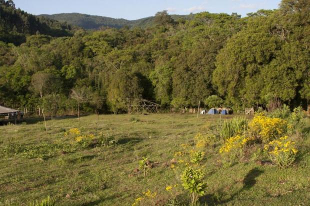 Festival MorroStock terá banheiro seco, tendas de bambu e saneamento ecológico Morrostock/Divulgação