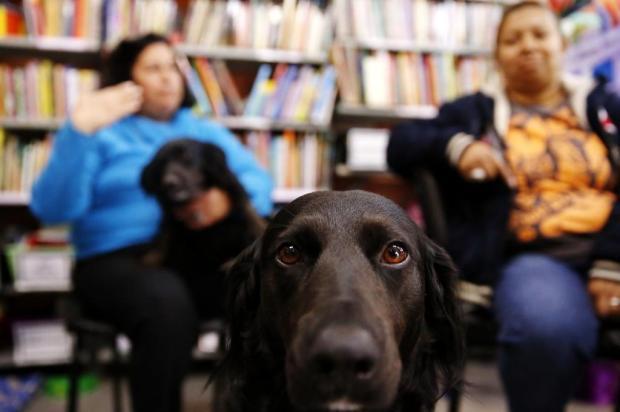 Cães auxiliam na educação de crianças especiais em Porto Alegre Mateus Bruxel/Agencia RBS