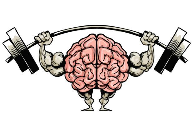 Assim como o corpo, cérebro também pode ser malhado para ter melhor desempenho Gonza Rodriguez/Agência RBS