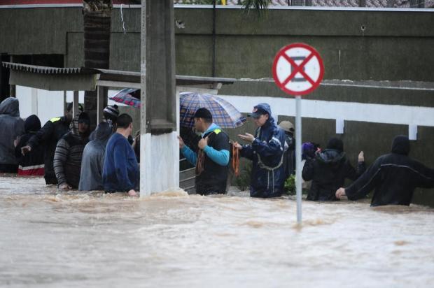 Resultado de imagem para Período de chuvas aumenta riscos de leptospirose