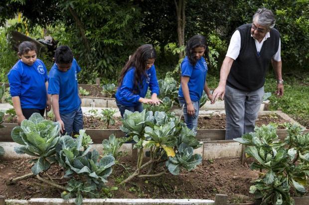Aposentado cria e cuida de horta em escola estadual de Porto Alegre Mateus Bruxel/Agencia RBS