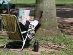 Porto Alegre tem domingo ensolarado