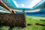 Gramado da Arena passa por manutenção para a temporada 2016