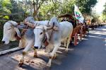 Lomba Grande comemora dia do colono em desfile
