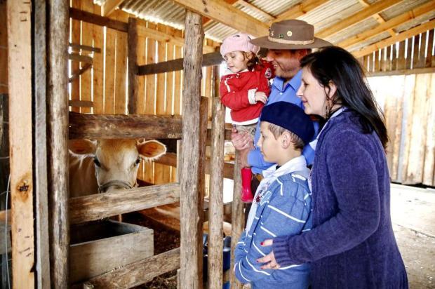 Bichos de pequeno e médio porte fazem alegria da criançada na Fazendinha Adriana Franciosi/Agencia RBS