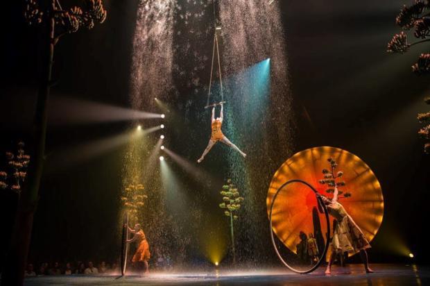 Filho de fundador do Cirque du Soleil morre durante ensaio de espetáculo Divulgação / Facebook/Facebook