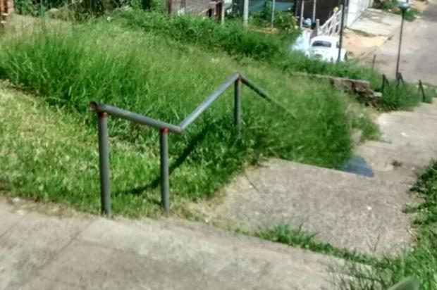 DMLU não cumpre prazo e escadaria em Porto Alegre segue sem serviço de capina desde novembro Arquivo pessoal/Leitor/DG