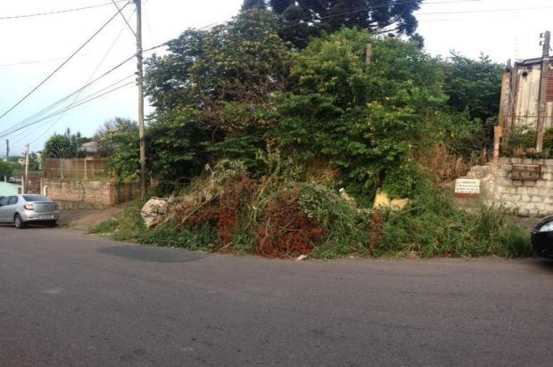 Sem limpeza há dois anos, terreno baldio em Alvorada vira depósito irregular de lixo Arquivo Pessoal/Leitor/DG