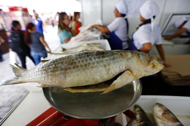 Veja onde garantir o peixe da Sexta-feira Santa em feiras em Porto Alegre e Região Metropolitana Mateus Bruxel/Agencia RBS