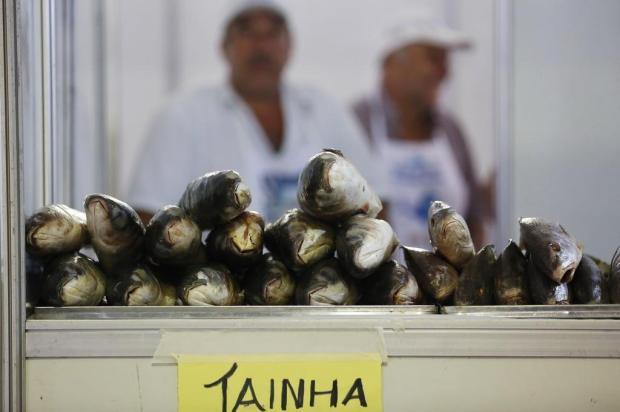 Sexta-feira Santa: saiba como escolher o peixe certo para cada tipo de preparo Mateus Bruxel/Agencia RBS
