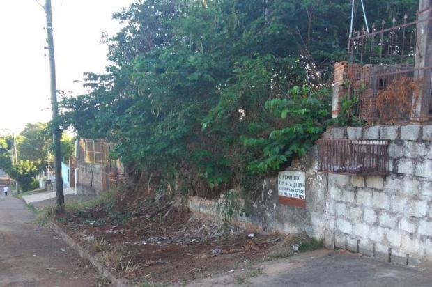 Após dois anos, prefeitura de Alvorada limpa calçada invadida por lixo de terreno baldio Arquivo Pessoal/Leitor/DG