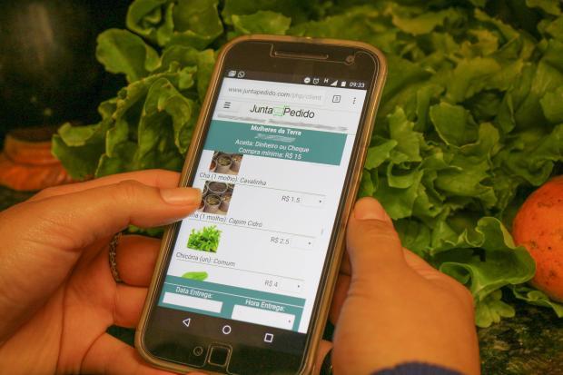 Produtores passam a vender orgânicos por site em Porto Alegre e cidades da Região Metropolitana Catiana Medeiros MST / Divulgação./