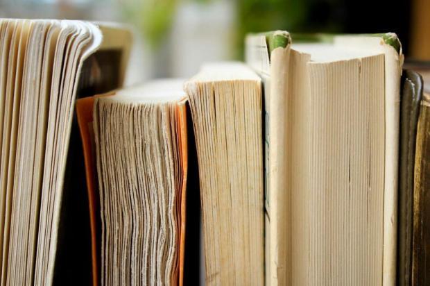 Biblioteca Pública de Novo Hamburgo aceita devolução de livros atrasados sem multa Syd Wachs on Unsplash/Divulgação