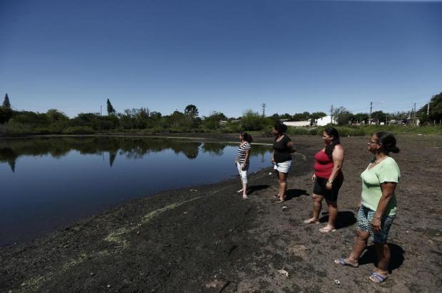 Jacarés em lagoa de Gravataí causam alvoroço entre moradores Carlos Macedo/Agencia RBS