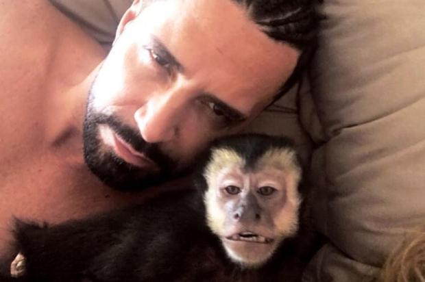 Morre Twelves, macaco de estimação do cantor Latino Instagram/Reprodução