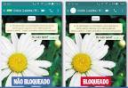 Saiba se você foi bloqueado no WhatsApp Reprodução / WhatsApp/WhatsApp