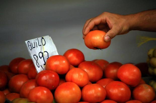 Preço do tomate dispara na Região Metropolitana; veja as alternativas Tadeu Vilani/Agencia RBS
