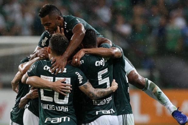 """Luciano Périco: """"As verdades do Brasileirão"""" Palmeiras / Divulgação/Divulgação"""