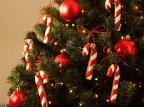 Natal: aprenda duas receitas para decorar e presentear União / Divulgação/Divulgação