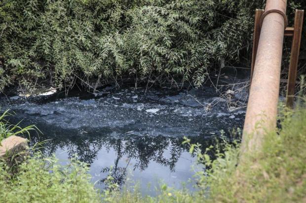 Com água preta e odor forte, arroio em Guaíba preocupa moradores André Ávila/Agencia RBS