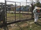 Dengue: casos autóctones em Porto Alegre aumentam 90% em uma semana Patrícia Coelho/PMPA/Divulgação