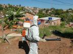 Porto Alegre já registra mais de 60 casos de dengue em 2019 Luciano Lanes / PMPA/PMPA