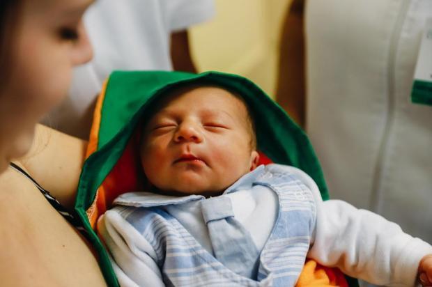 Em alusão à Páscoa, bebês ganham roupinha de cenoura no Hospital de Clínicas Omar Freitas/Agencia RBS