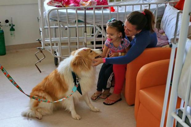 Cachorrinha Bia interage com pacientes no Hospital da Restinga Júlio Cordeiro/Agencia RBS