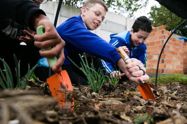 Alunos aprendem sobre meio ambiente e sustentabilidade por meio do trabalho em hortas Andréa Graiz/Agencia RBS