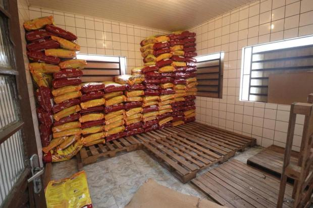 Ladrões furtam 10 toneladas de ração do canil de São Leopoldo e abandonam dois animais Thales Ferreira/Prefeitura de São Leopoldo
