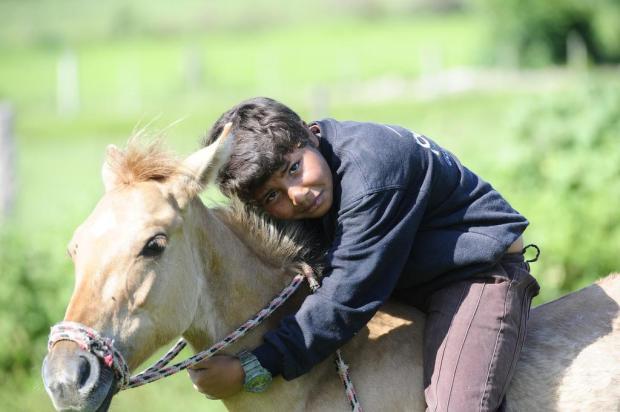"""""""Não troco ele por nada"""", diz menino que pediu ao Papai Noel milho para seu cavalo Ronaldo Bernardi/Agencia RBS"""