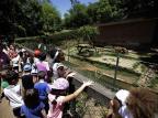 Após terem dinheiro de passeio levado da escola, crianças conhecem zoológico de Sapucaia do Sul Lauro Alves/Agencia RBS
