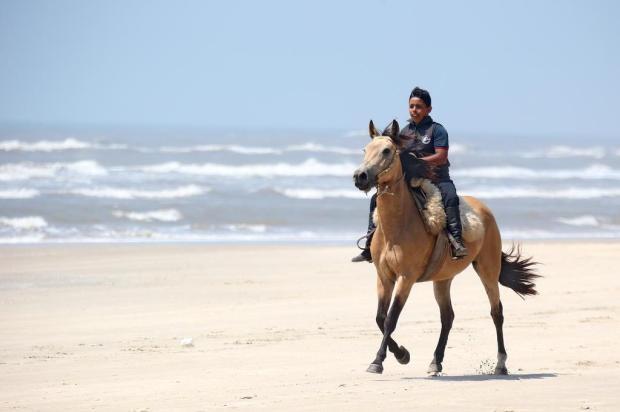 Menino de 10 anos pede cavalo ao Papai Noel e tem desejo atendido graças à mobilização de professoras Lauro Alves/Agencia RBS