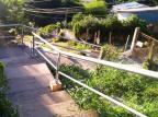 Escadaria no bairro São José, na Capital, é consertada após inúmeros pedidos de morador da região Arquivo Pessoal / Arquivo Pessoal/Arquivo Pessoal