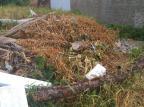 Em São Leopoldo, terreno baldio vira lixão e incomoda vizinhança Arquivo Pessoal / Arquivo Pessoal/Arquivo Pessoal