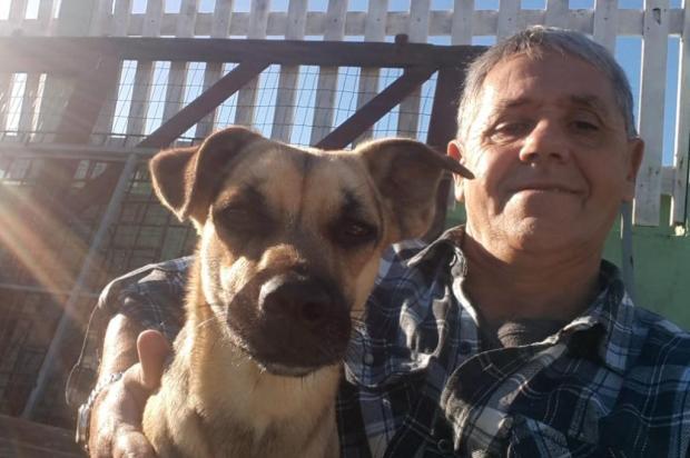 Cadela volta para o antigo tutor após ser resgatada de local onde cães foram congelados Arquivo Pessoal/Arquivo Pessoal