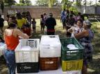 Pandemia isola ainda mais população das ilhas de Porto Alegre Mateus Bruxel/Agencia RBS
