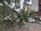 Ciclone-bomba deixa rastro de estragos e mortes no RS e em SC José S. Ferraz/Arquivo pessoal