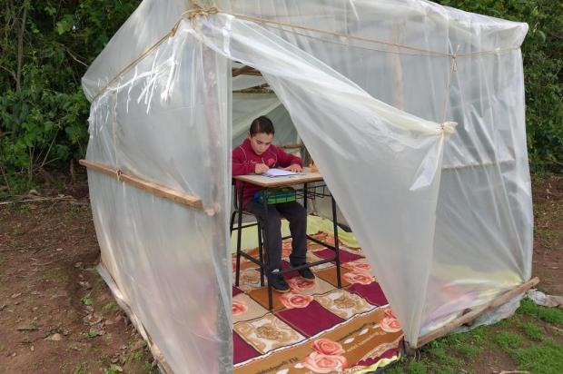 Sem internet em casa, família constrói tenda no meio da lavoura para filho assistir a aulas online Giovana Dalcin/Arquivo Pessoal