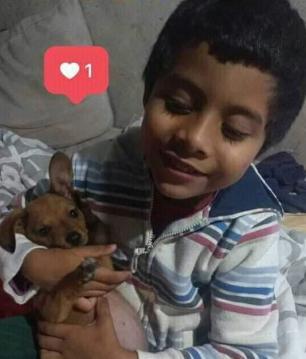 """""""Era doce e vivia com um sorriso no rosto"""", diz tia de menino atropelado por caminhão em Porto Alegre Arquivo Pessoal/Arquivo Pessoal"""