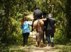 Procura por terapia com cavalos cresce em Porto Alegre em função da pandemia Félix Zucco/Agencia RBS