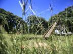 """""""Dá até para perder uma criança aqui"""", brinca frequentadora sobre grama alta em parque de Porto Alegre André Ávila / Agencia RBS/Agencia RBS"""