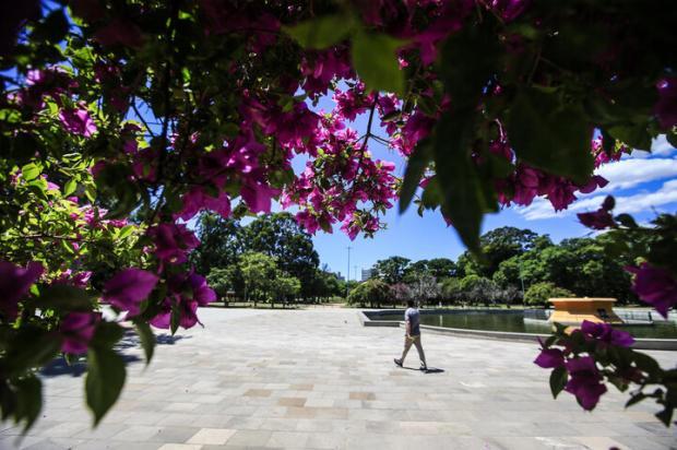 Prefeitura de Porto Alegre descarta lockdown e avalia restringir circulação em praças, parques e na orla André Ávila / Agencia RBS/Agencia RBS