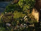 Prefeitura de Alvorada não resolve descarte irregular de lixo em terreno baldio Arquivo Pessoal / Arquivo Pessoal/Arquivo Pessoal