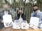 Na produção de doces, tia dos docinhos enfrentou a crise e mudou a forma de vender seus quitutes Lauro Alves / Agencia RBS/Agencia RBS