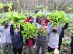 Projeto social no bairro Umbu incentiva agricultura urbana e geração de renda Ronaldo Bernardi / Agencia RBS/Agencia RBS