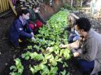 No lugar de lixo e insegurança, moradoras de Alvorada criam horta comunitária Ronaldo Bernardi / Agencia RBS/Agencia RBS