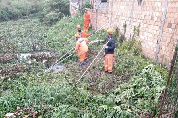 Falta de limpeza e cheias assustam moradores do bairro Sarandi Arquivo Pessoal / Arquivo Pessoal/Arquivo Pessoal