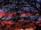 Quarta-feira será mais um dia de sol e temperatura alta no Rio Grande do Sul Lauro Alves / Agencia RBS/Agencia RBS