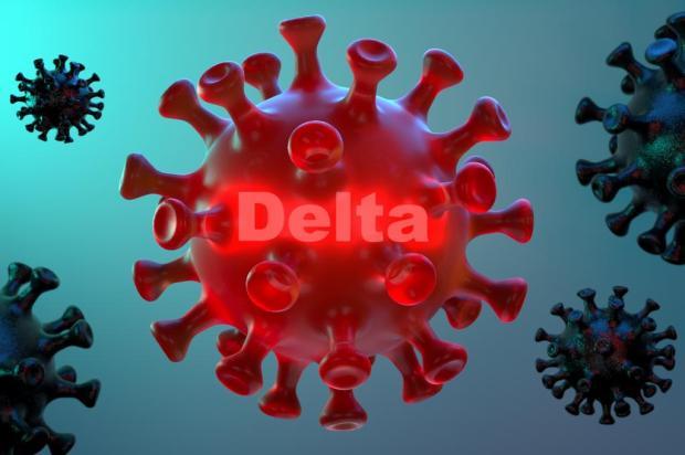 Entenda por que a variante Delta não causou aumento de casos e de mortes no Brasil Dimitris_Barletis / stock.adobe.com/stock.adobe.com